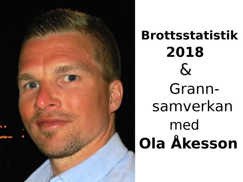 Blåjus Tyresö, Brottsstatistik 2018